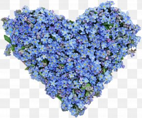 Blue Flower Heart - Flower Stock Photography Heart Royalty-free Blue PNG