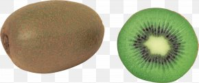 Kiwi Image, Free Fruit Kiwi Pictures Download - Kiwifruit Actinidia Deliciosa PNG