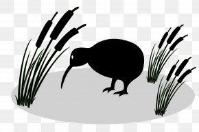 Fern - New Zealand Bird Silhouette Clip Art PNG