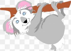Cartoon Raccoon - Koala PNG