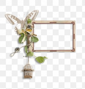 Creative Butterfly Cage Frame - Butterfly Picture Frame PNG
