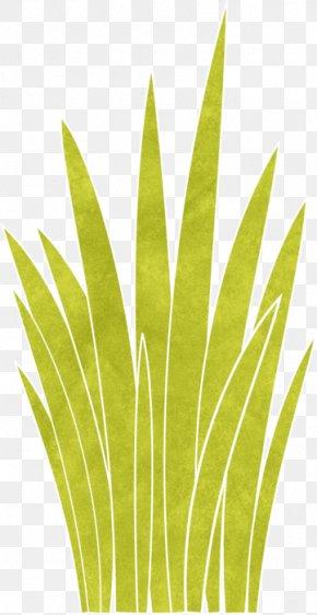 Leaf - Leaf Grasses Plant Stem Commodity Family PNG