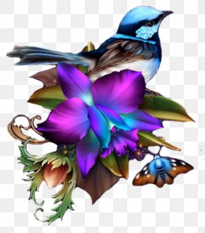 Painting - Clip Art Floral Illustrations Borders And Frames Image PNG