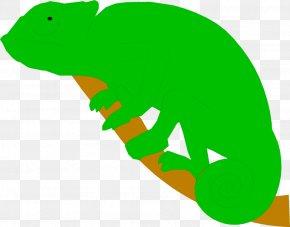 Chameleon - Reptile Chameleons Lizard PNG