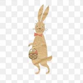 Kangaroo - Kangaroo Sticker Icon PNG
