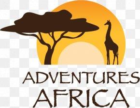 Wild Adventure - Logo Safari Lodge Fauna Of Africa Font PNG