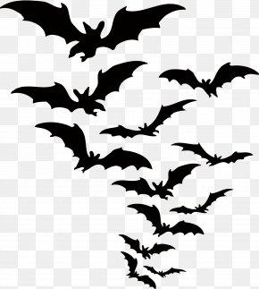 Vector Bat - Bat Halloween Clip Art PNG