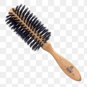 Hair - Comb Hairbrush Bristle Hair Care PNG