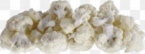 Cauliflower - Cauliflower Cabbage Broccoli Vegetable Vegetarian Cuisine PNG