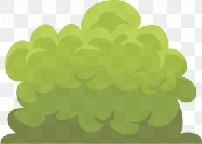 Vitis Tree - Green Leaf Cloud Plant Clip Art PNG