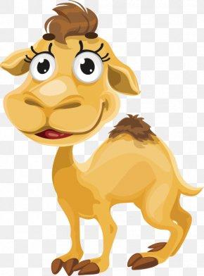 Camel - Camel Cartoon Royalty-free PNG