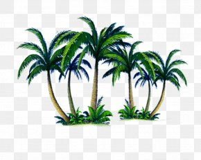 Palm Tree Island - Arecaceae Tree Computer File PNG