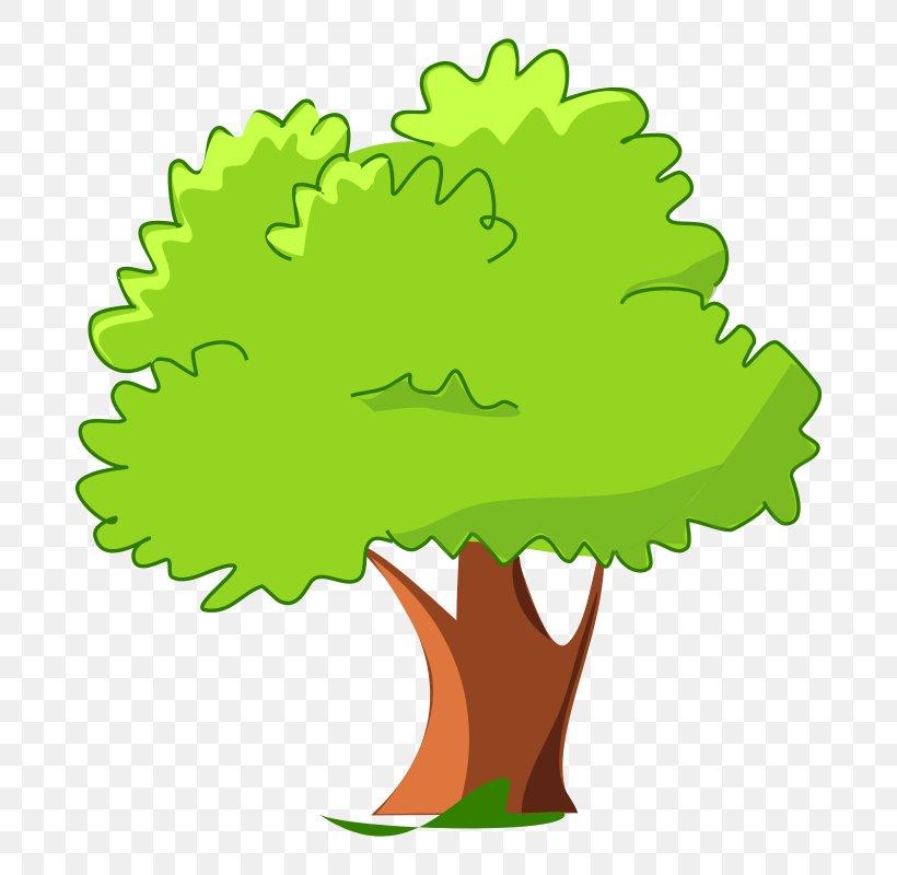 Cartoon Tree Clip Art, PNG, 800x800px, Tree, Blog, Cartoon, Clip Art, Flower Download Free