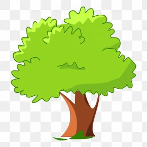 Tree Clip Art - Cartoon Tree Clip Art PNG