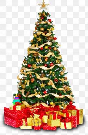 Christmas Tree - Christmas Tree Gift Clip Art PNG