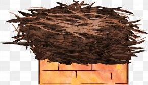 Bird's Nest - Edible Birds Nest Bird Nest Watercolor Painting PNG