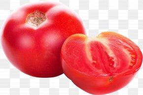 Tomato Image - Tomato Salsa Clip Art PNG