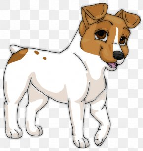 Puppy - Dog Breed Jack Russell Terrier Puppy Boston Terrier Companion Dog PNG