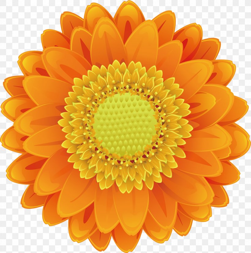Drawing Cartoon, PNG, 1257x1266px, Common Sunflower, Cartoon, Chrysanths, Cut Flowers, Dahlia Download Free
