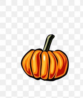 Pumpkin - New Hampshire Pumpkin Festival Pumpkin Pie Animation Clip Art PNG