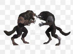 Werewolf - The Elder Scrolls V: Skyrim Werewolf Minecraft Nexus Mods PNG