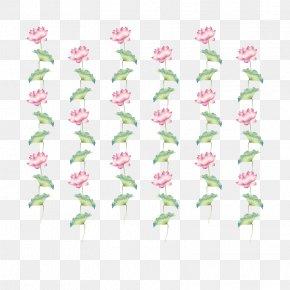 Lotus - Petal Flora Green Rosaceae Pattern PNG
