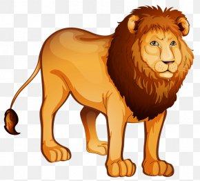 Lion - The Lion King Tiger Felidae PNG
