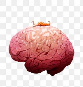 Brain - Plague Inc. Worm Plague Inc: Evolved Infection Pandemic PNG