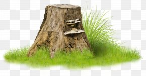 Forest - Tree Stump Raster Graphics Blackberry Clip Art PNG