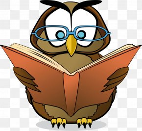 Owl - Reading Free Content Clip Art PNG