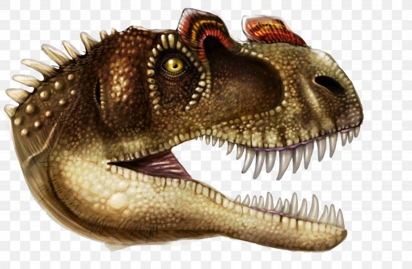 Tyrannosaurus Dinosaur Anatomy Lion Bear, PNG, 3840x2513px, Tyrannosaurus, Anatomy, Animal Figure, Apex Predator, Bear Download Free