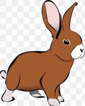 Rabbit Clip Art - Rabbit Free Content Clip Art PNG