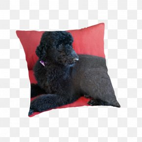 Poodle - Poodle Dog Breed Throw Pillows Cushion Water Dog PNG