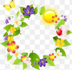 Wildflower Petal - Flowers Background PNG