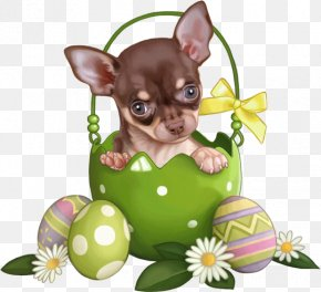 Christmas Puppy - Puppy Bulldog Animal Easter Bunny Easter Egg PNG
