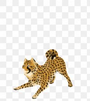Cheetah Clipart - Cheetah Clip Art PNG