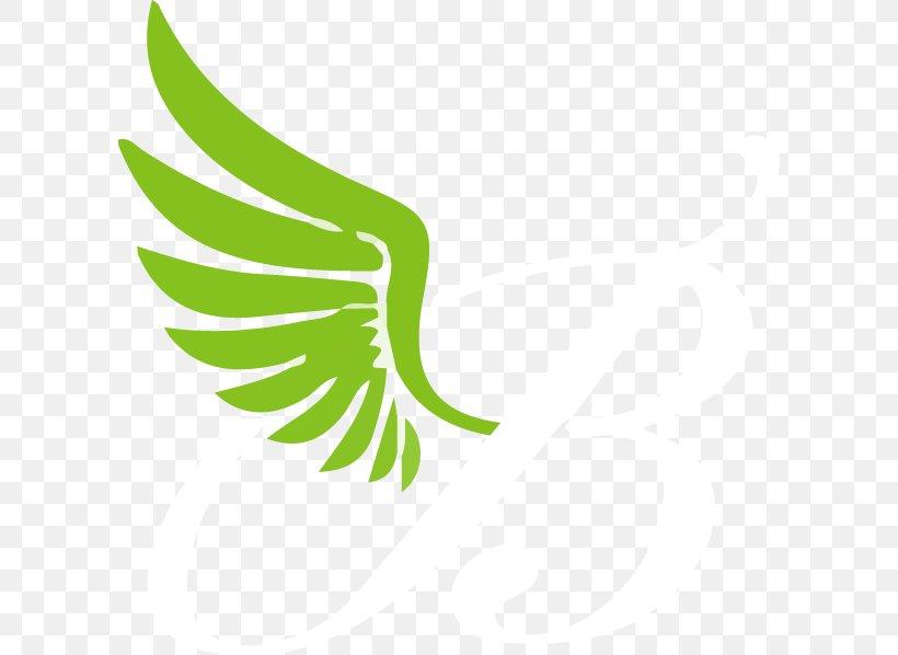 Leaf Logo Plant Stem Beak Font, PNG, 604x598px, Leaf, Beak, Bird, Grass, Green Download Free