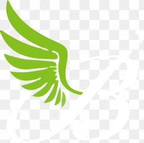 Leaf - Leaf Logo Plant Stem Beak Font PNG