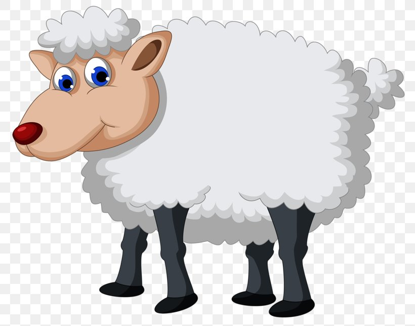 Sheep Clip Art Vector Graphics Image, PNG, 800x643px, Sheep, Animal, Animal Figure, Cartoon, Cattle Like Mammal Download Free