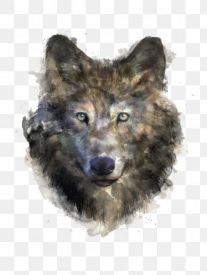 Black Wolf - Gray Wolf T-shirt Black Wolf Drawing Illustration PNG