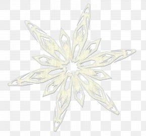 Snowflake Image - Symmetry White Flower Pattern PNG