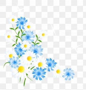 Spring Flowers Decortive Element Clipart - Moto G5 Chrysanthemum LG K10 Oxeye Daisy Leather PNG