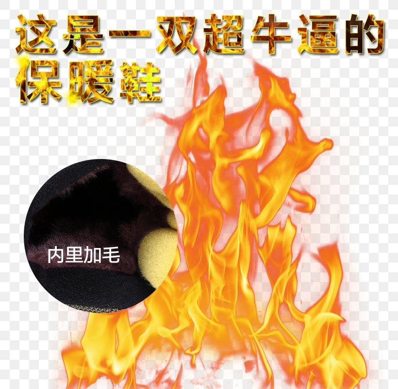 Light Fire Flame, PNG, 800x800px, Fire, Alpha Channel, Explosion, Flame, Heat Download Free