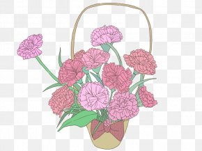 Carnation Flower Baskets PNG