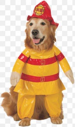 Dog - Dog Cat Halloween Costume Pet PNG