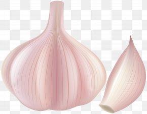 Garlic Clip Art - Petal PNG