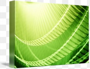 Green Abstract - Green Abstract Art Photography Digital Art PNG