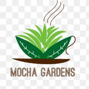 Leaf - Leaf Logo Brand Plant Stem Font PNG