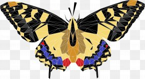 Peacock - Butterfly Insect Made In Leeds Festival Download PNG