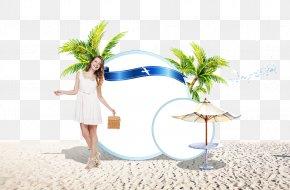 Seaside Scenery - Cartoon Illustration PNG